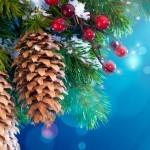 Pigna albero di Natale